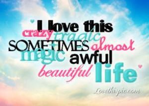 11009-Crazy-Beautiful-Life